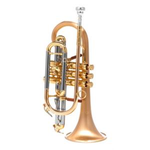 Is Carol Brass CCR-6882T-GSS-SLB a good match for you?