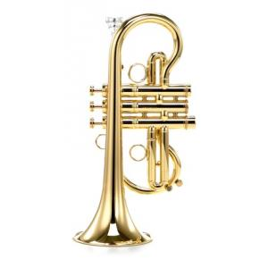 """Take the """"IS IT GOOD FOR ME"""" test for """"Carol Brass CCR-7775-YSS-Eb-L"""", read the reviews and join the community!"""