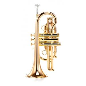 "Take the ""IS IT GOOD FOR ME"" test for ""Carol Brass CCR-8880-GSS-Bb-L"", read the reviews and join the community!"
