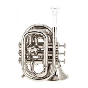 Is Carol Brass CPT-1000-YSS-Bb-WN a good match for you?
