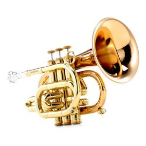 Is Carol Brass CPT-3000-GLS-Bb-L a good match for you?