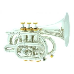 Is Carol Brass CPT-3000-GLS-Bb-SG a good match for you?