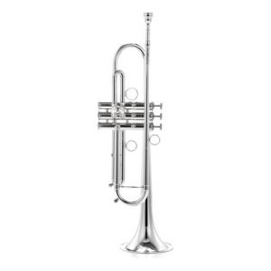Is Carol Brass CTR-4000H-YSS-Bb-S a good match for you?