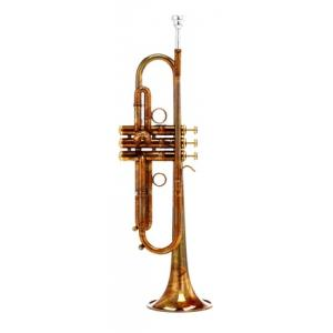 Is Carol Brass CTR-4440L-PSM-Bb-AL a good match for you?