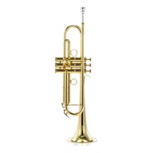Is Carol Brass CTR-5000L-YLS-Bb-L a good match for you?