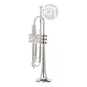 Is Carol Brass CTR-5060L-GSS-Bb-S a good match for you?