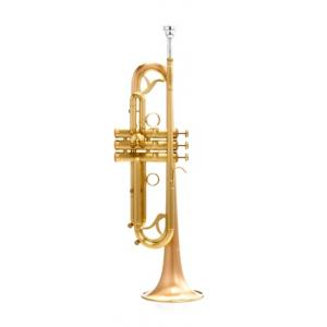 Is Carol Brass CTR-7000L-GLT-Bb-SL a good match for you?