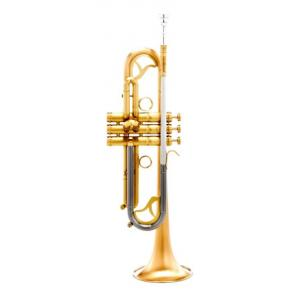 Is Carol Brass CTR-7660L-GSS-Bb-SL a good match for you?