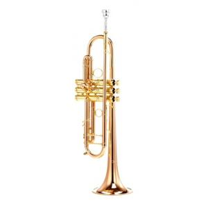 Is Carol Brass CTR-9990H-RSM-Bb-L B-Stock a good match for you?