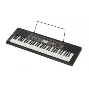 Is Casio CTK-2500 a good match for you?