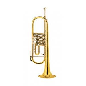 "Take the ""IS IT GOOD FOR ME"" test for ""Cerveny CTR 501PRXT Bb-Trumpet"", read the reviews and join the community!"