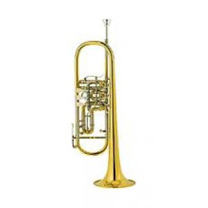 "Take the ""IS IT GOOD FOR ME"" test for ""Cerveny CTR 701RX Bb-Trumpet"", read the reviews and join the community!"