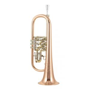 "Take the ""IS IT GOOD FOR ME"" test for ""Cerveny CVFH703 Flugelhorn Mistrinanka"", read the reviews and join the community!"