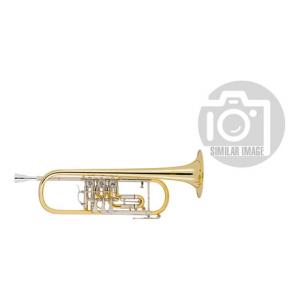 "Take the ""IS IT GOOD FOR ME"" test for ""Cerveny CVTR 501RT Bb-Trumpet"", read the reviews and join the community!"