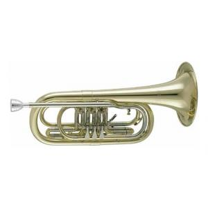 """Take the """"IS IT GOOD FOR ME"""" test for """"Cerveny CVTR 590 Bass Trumpet"""", read the reviews and join the community!"""