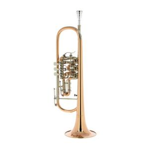 "Take the ""IS IT GOOD FOR ME"" test for ""Cerveny CVTR 701R Bb-Trumpet"", read the reviews and join the community!"