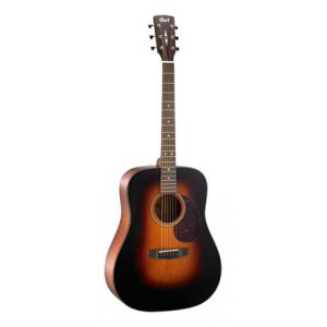Is Cort Earth 300V SB a good match for you?