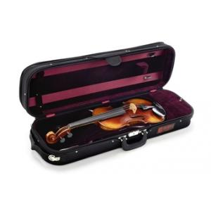 Is David Gage RV4 Pro Violin a good match for you?