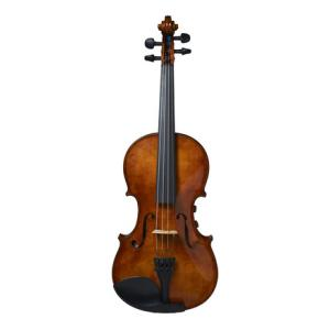 Is David Gage RV4Pe F Realist Violin a good match for you?