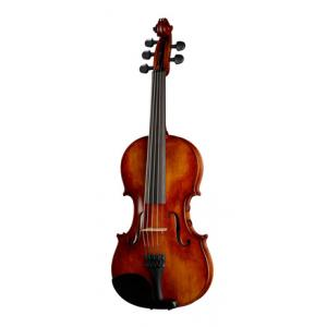 Is David Gage RV5Pe FW Realist Violin a good match for you?