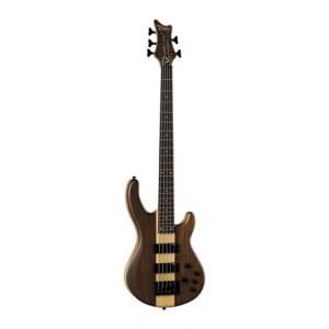 Is Dean Guitars Edge Pro 5 Walnut a good match for you?