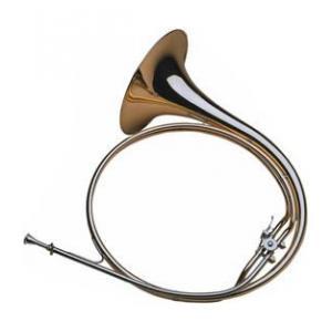 Is Dotzauer Parforce Horn Bb/Eb 'Concert' a good match for you?