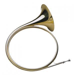 Is Dotzauer Parforce Horn in Bb 18220 a good match for you?