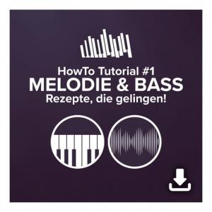 Is DVD Lernkurs HowTo Tutorial 1 Melodie&Bass a good match for you?