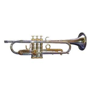 """Take the """"IS IT GOOD FOR ME"""" test for """"Eclipse Large Yellow Bb-Trumpet"""", read the reviews and join the community!"""