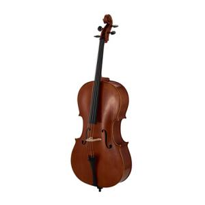Is Edgar Russ Linea Macchi Cello Stradivari a good match for you?