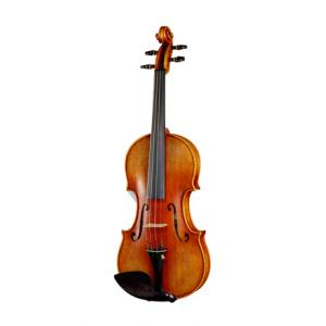 Is Edgar Russ Linea Mauro Macchi Violin Gua. a good match for you?
