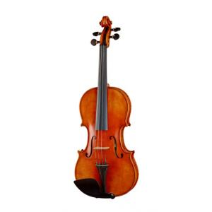 Is Edgar Russ Linea Mauro Macchi Violin Str. a good match for you?