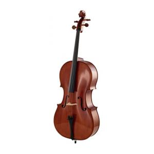 Is Edgar Russ Scala Perfetta Cello a good match for you?