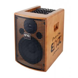 Is Engl A101 Acoustic Combo B-Stock a good match for you?