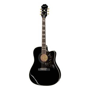 Is Epiphone Hummingbird Performer Pro EB a good match for you?