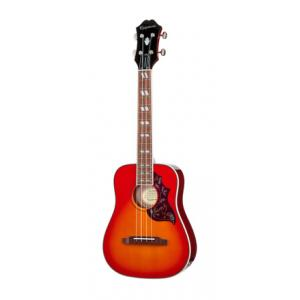 Is Epiphone Ukulele Hummingbird Outfit FCS a good match for you?