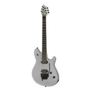 Is Evh Wolfgang Special Ebony a good match for you?