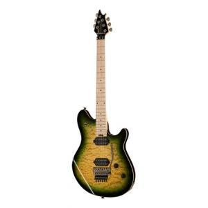 Is Evh Wolfgang WG Standard Z B-Stock a good match for you?