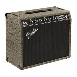 Is Fender 65 Princeton Reverb Chilewich a good match for you?