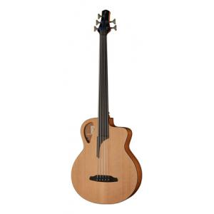 Is Furch Bc 61-5CM Fretless B-Stock a good match for you?