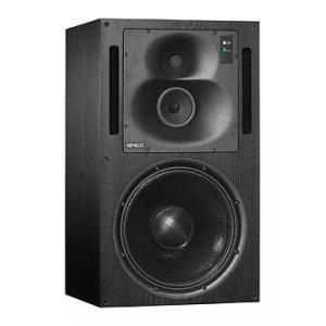 """Take the """"IS IT GOOD FOR ME"""" test for """"Genelec 1038 BEM"""", read the reviews and join the community!"""