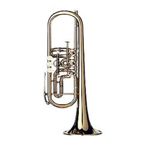 """Take the """"IS IT GOOD FOR ME"""" test for """"Gerd Dowids BZ-Series C-Trumpet"""", read the reviews and join the community!"""