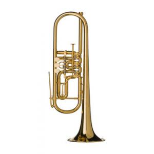 Is Gerd Dowids BZ-Series GL72 GP Bb-Trumpet a good match for you?