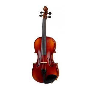 "Take the ""IS IT GOOD FOR ME"" test for ""Gewa Allegro VL1 Violin 4/4 OC LH"", read the reviews and join the community!"