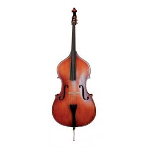 Is Gewa Ideale Double Bass 4/4 a good match for you?