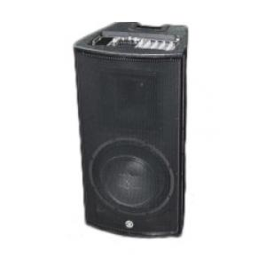 """Take the """"IS IT GOOD FOR ME"""" test for """"Golden Ton PA Portable System"""", read the reviews and join the community!"""