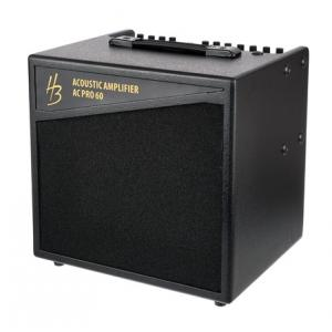 Is Harley Benton AC PRO 60 a good match for you?