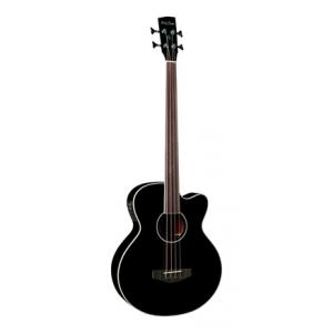 Is Harley Benton B-30BK-FL Acoustic Bass Serie a good match for you?