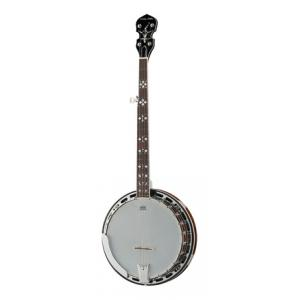 Is Harley Benton BJ-55Pro 5 String Banjo a good match for you?