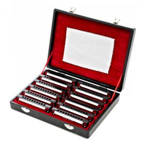 Is Harley Benton Blues Harmonica Set a good match for you?